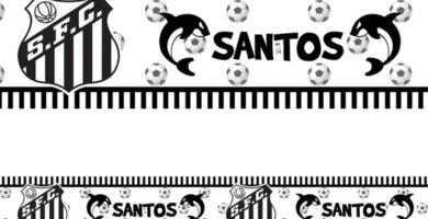Papel de Parede Santos FC 3D